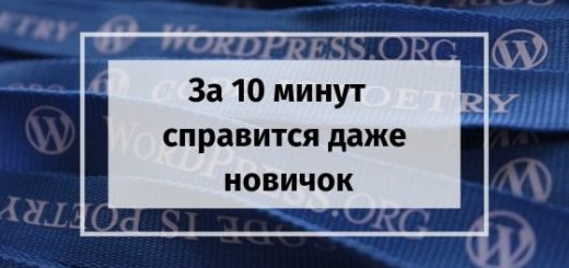 kak za 10 minut vyvesti zapisi na stranitsu Wordpress